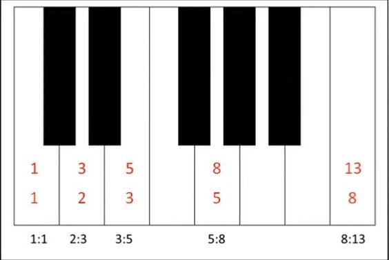 Druvides_Klaviertastatur_Die Resonanz im menschlichen Körper
